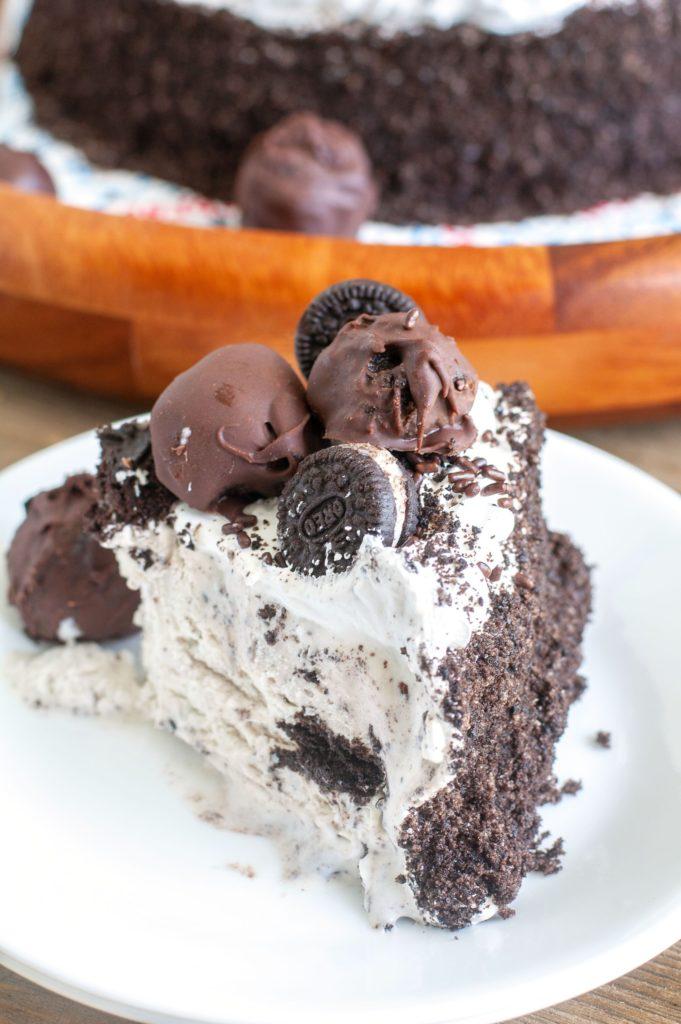 Piece of Ice cream cake on a white plate
