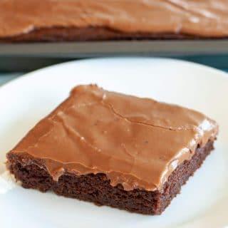 Piece of chocolate cake on plate
