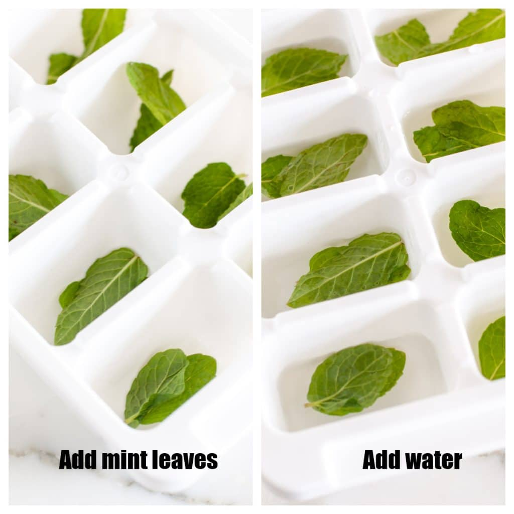 Ice cube tray with fresh mint leaves.