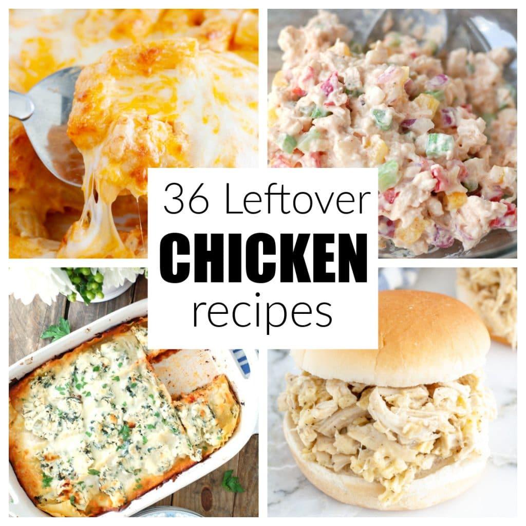 Casserole, chicken salad, lasagna, chicken sandwich.