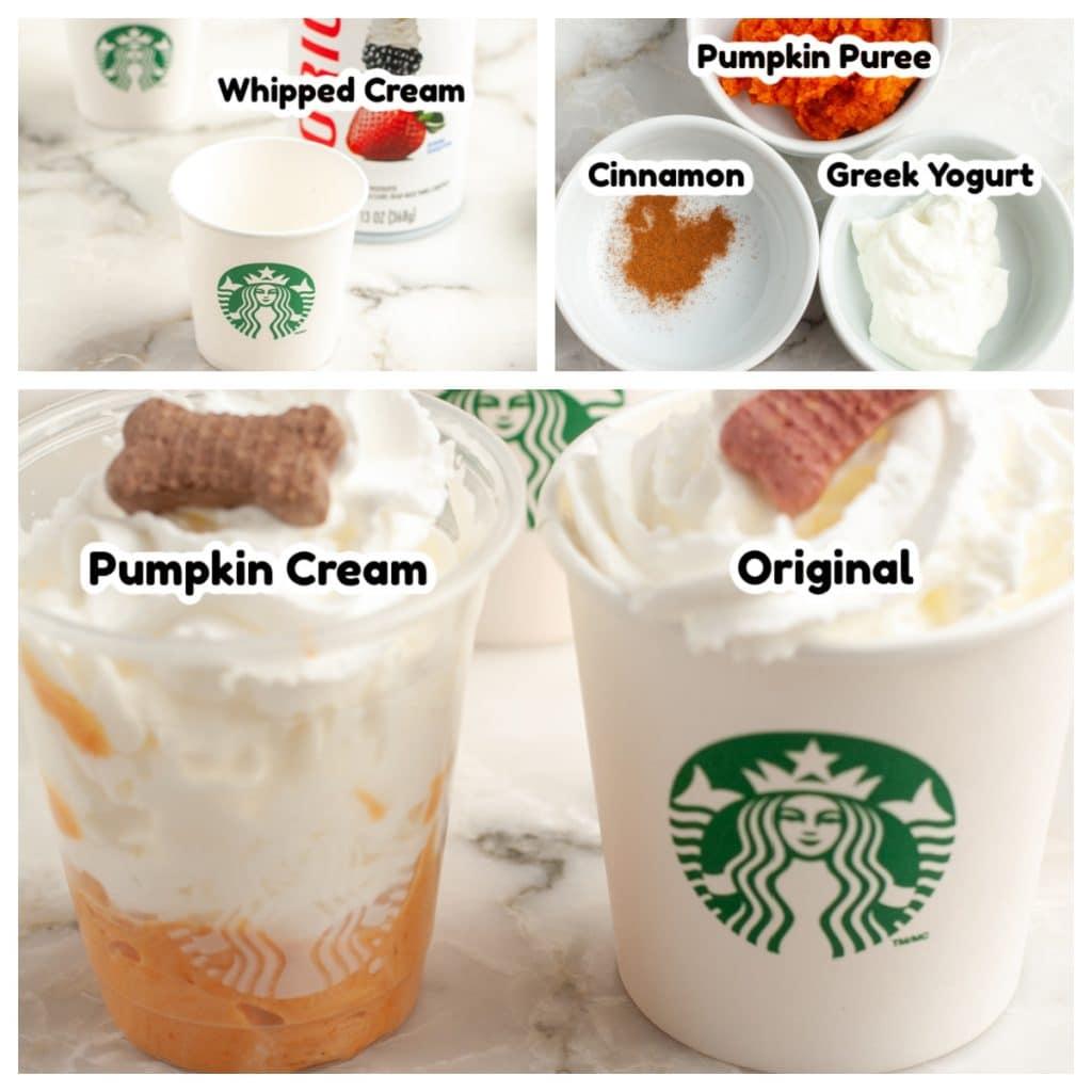 Whipped cream, pumpkin puree, cinnamon and Greek yogurt.