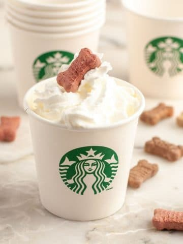 Small cup with whipped cream and dog treats.